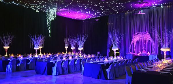 wedding-event-planning-management-lights-setup